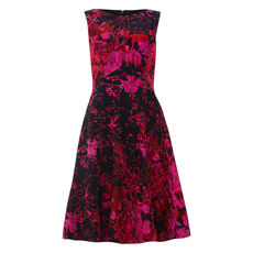 Phase Eight Damen Kleid Fifi
