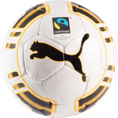 Puma Trainingsball evoPOWER, Gr. 5, weiß