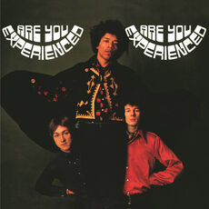 Sony The Jimi Hendrix Experience ‎– Are You Experienced, Vinyl 2 LP's
