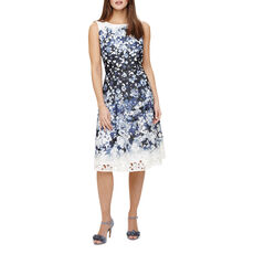 Phase Eight Damen Kleid Angela
